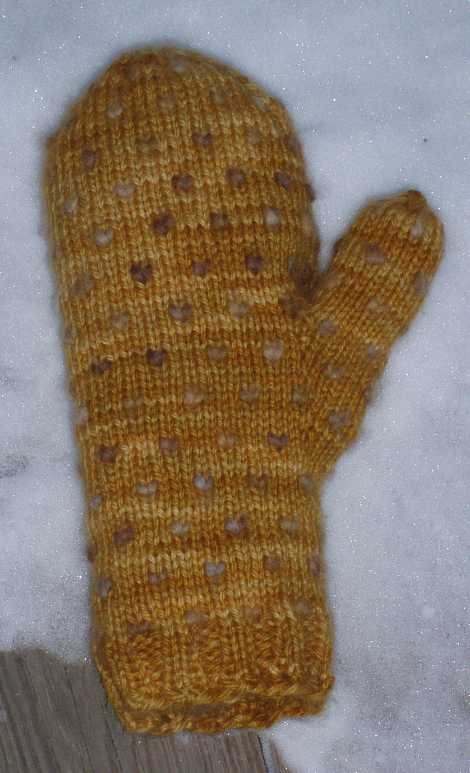 thrummed-mitten-in-the-morning.jpg